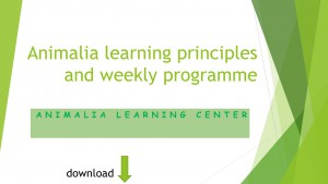 Animalia learning principles and weekly programme download thingy